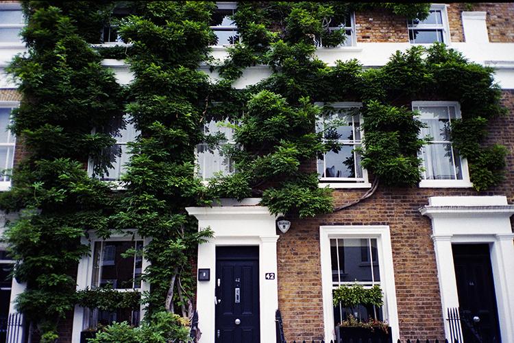 Chelsea - London 8