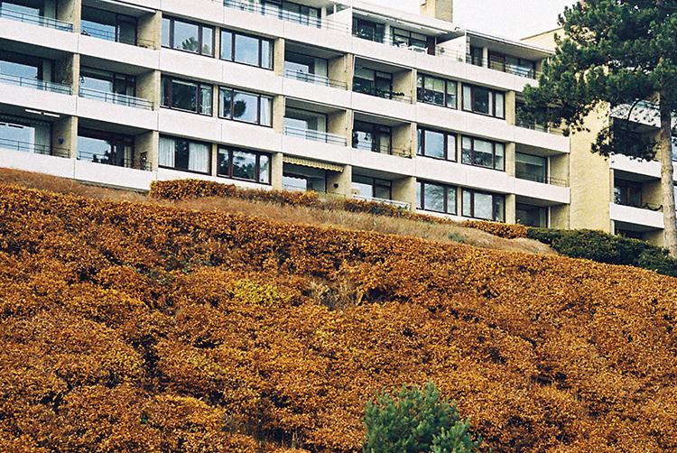 Skodsborg 6